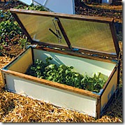 Deluxe Coldframe