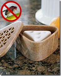 Fruit Fly Soap Stone