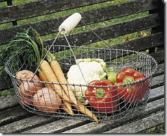 Wire Vegetable Harvest Basket